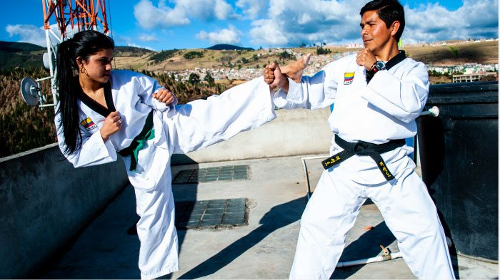 taekwondo aunar